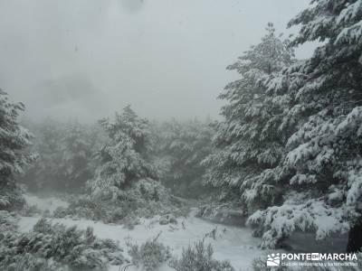 Valle de Iruelas - Pozo de nieve - Cerro de la Encinilla;senderismo aragon senderismo navarra